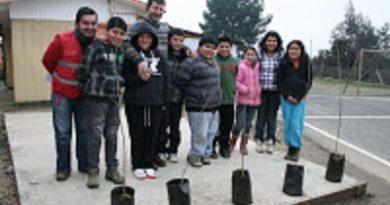 Programa de Arborización de CONAF, en Purén