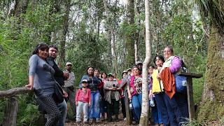 "DIRIGENTES SOCIALES URBANOS  VISITARON MONUMENTO NATURAL ""CONTULMO"""
